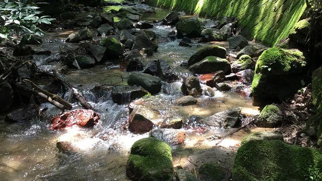 Yamaguchi-river